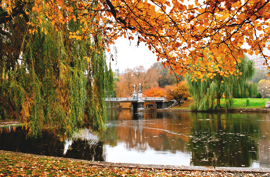 photo of lake in center of park during fall with lots of trees with changing leaves and a small pedestrian bridge in the background